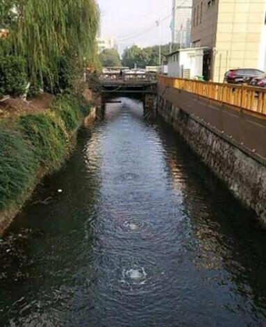 济南市小清河黑臭河道治理项目